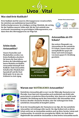 Astaxanthin Kapseln 4mg - Stärker als Coenzym Q10 und OPC - 100% Natürliche Antioxidantien aus Mikroalge Haematococcus Pluvialis - Starke Antioxidative Wirkung Ohne Zusätze - 60 Softgelkapseln - 4
